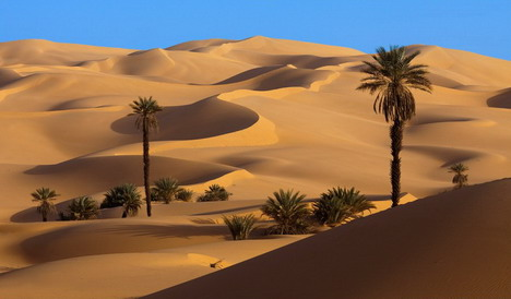 dunes_beautiful_nature_landscapes_photographs