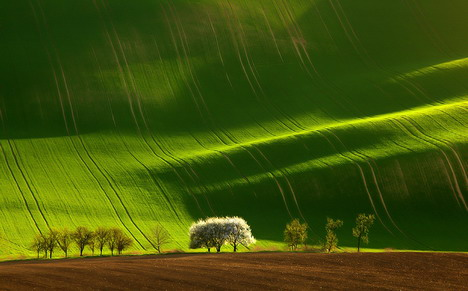 moravian_field_by_marek_kiedrowski_beautiful_nature_landscapes_photographs