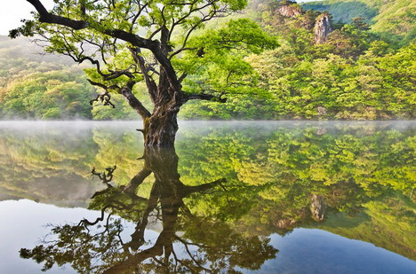reflection_beautiful_nature_landscapes_photographs