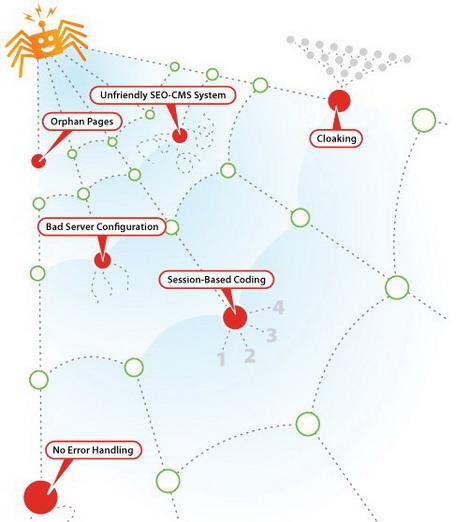 spider_traps_best_seo_infographics