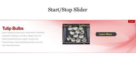 start_stop_slider_best_jquery_image_galleries_sliders_slideshows_plugins