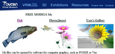 toucan_virtual_museum_best_websites_to_download_free_3d_models