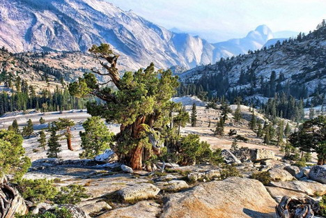 yosemite_national_park_beautiful_nature_landscapes_photographs