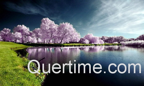 best_ways_to_add_watermark_to_photos_n_images_online