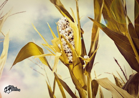 stop_global_warming_corn
