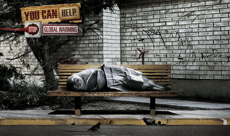 wwf_homeless_seal