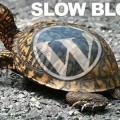 causes_make_wordpress_blog_slow_load_time