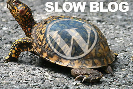 causes_make_wordpress_blog_slow_load_time