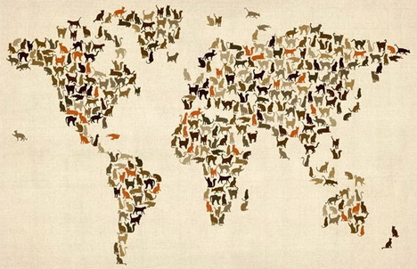cats_map_of_the_world
