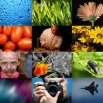 Top 22 Image, Photo Search Engines