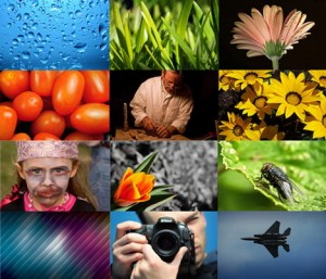 best_image_photo_search_engines