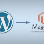 The Process of Handling The Magento WordPress Integration