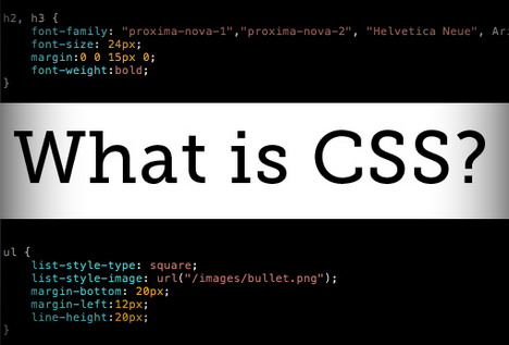 css-basics