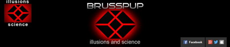 brusspup-youtube-channel