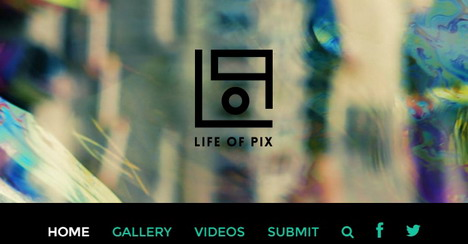life-of-pix-royalty-free-stock-images
