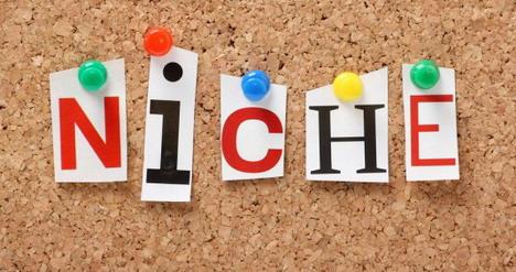 micro-niche-websites