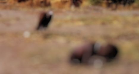 05-image-the-sudan-famine-by-kevin-carter