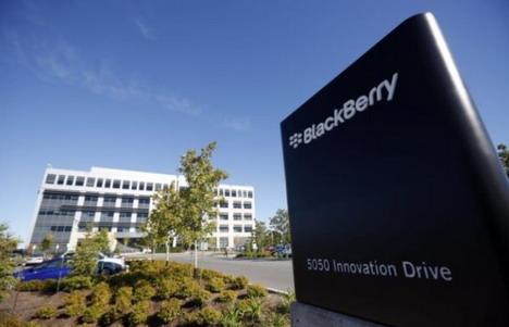 blackberry-face-extinction