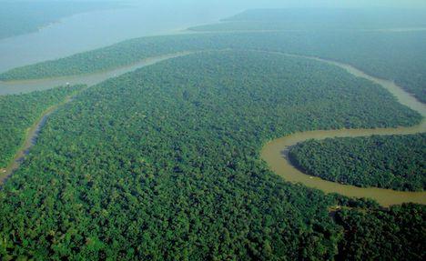 google-earth-aerial-view-amazon-rainforest