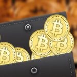 Top 15 Bitcoin Wallets with the Lowest Transaction Fee