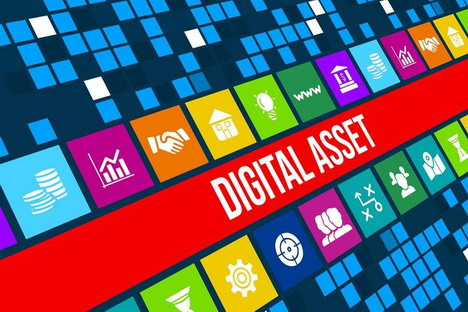 digital-asset-protection