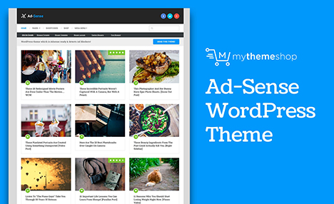 wordpress-theme-ad-sense