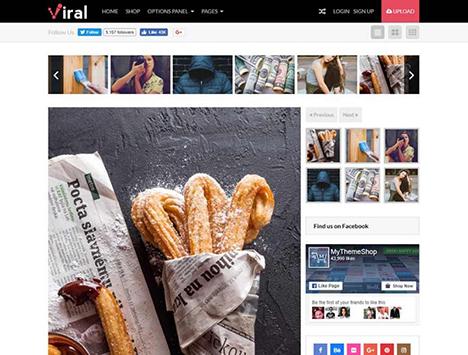 wordpress-theme-viral