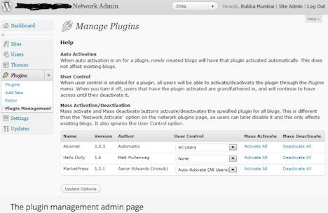 multisite-plugin-manager