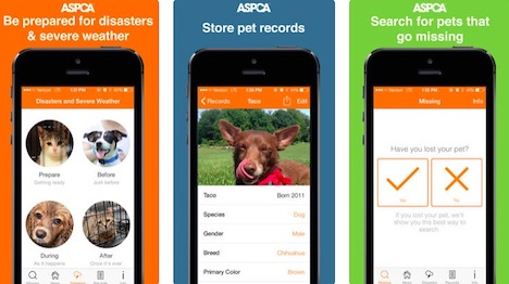 Image result for Pet Safety App for Lost Pets, Disaster Prep and Emergency Alerts apple store