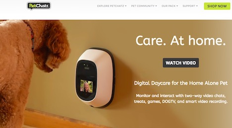 petchatz-pet-video-gadget