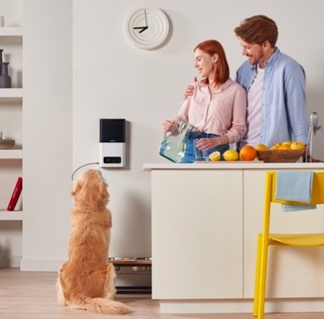 petcube-bites-pet-camera