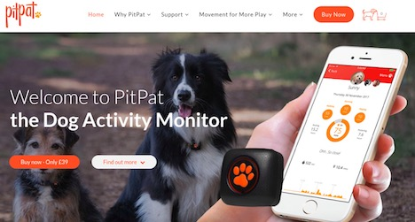 pitpat-dog-activity-monitor