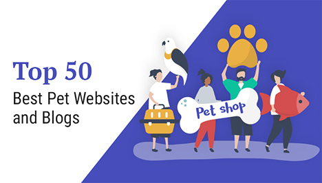 best-pet-websites-and-blogs