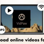 VidPaw: A Reliable Free Online Video Downloader
